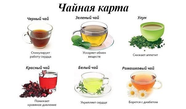 используют относится ли черный чай к мочегонным напиткам информацию предложениях
